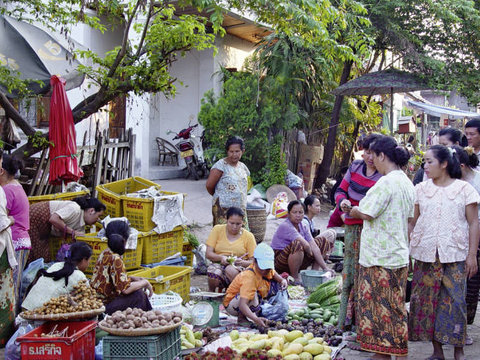Luang Prabang Family Reveal