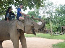 Elephant Village Sanctuary