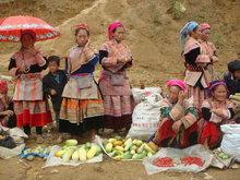 Muong Khuong Market