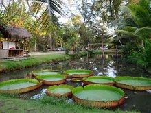 Binh Quoi Village