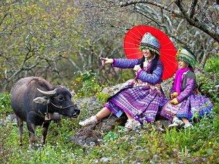 Northwest Vietnam Adventure