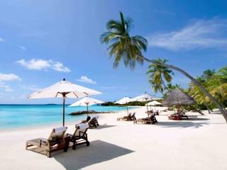 Vietnam Beach Tour