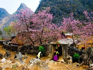 Vietnam Adventure Holiday