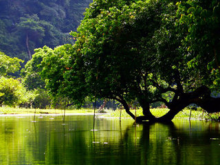 Vietnam Eco Adventure
