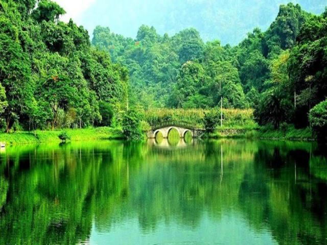 cuc_phuong_national_park_0.jpg