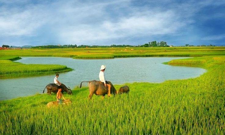 Indochina Tours